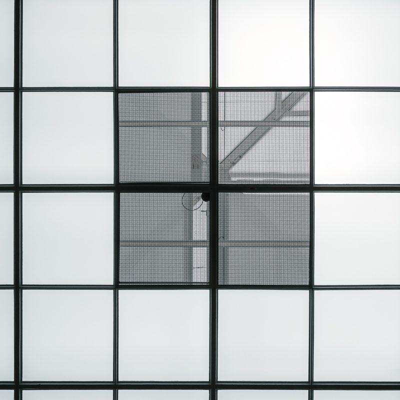 Alexander Brüll - Bild Nr. 16-2279 - aus der Serie STRUC/TEXTURE